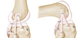 increase lubrication in knees